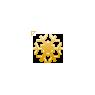 Drity Orange Snowflake