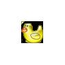 Cute Yellow Duck