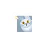 Harry Potter - Owl