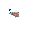 NBA - Charlotte Bobcats