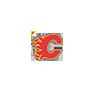 NHL - Calgary Flames