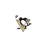 NHL - Pittsburgh Penguins