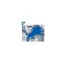 Detroit Lions - NFL