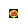 Number 29 - Nascar