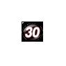 Number 30 - Nascar